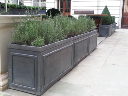 Rosewood Rectangle Lead Planters