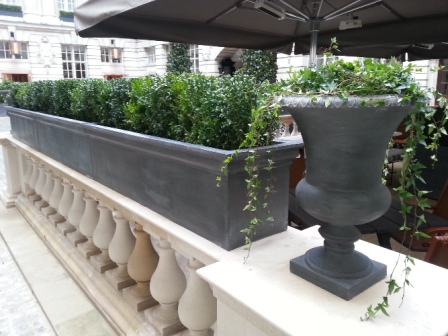 Rectangle Stainless/Lead Planters