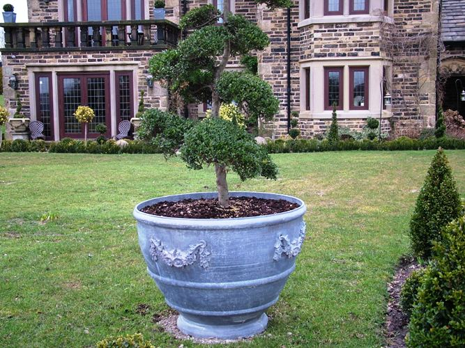 Egg Cup Lead Planter