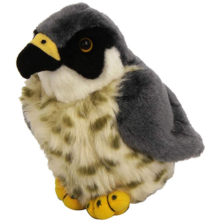 Baby Eagle ?- Fully Customisable Plush