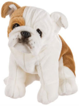 Cuddly Bulldog Soft Toy ?- Fully Customisable Plush