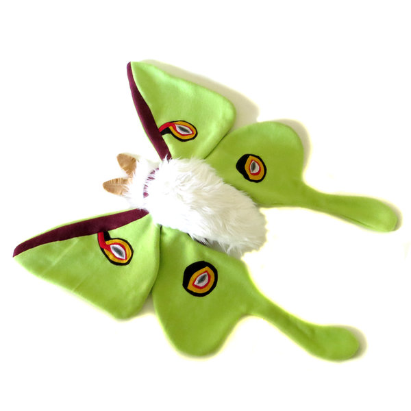?Cuddly Luna Moth - Fully Customisable Plush